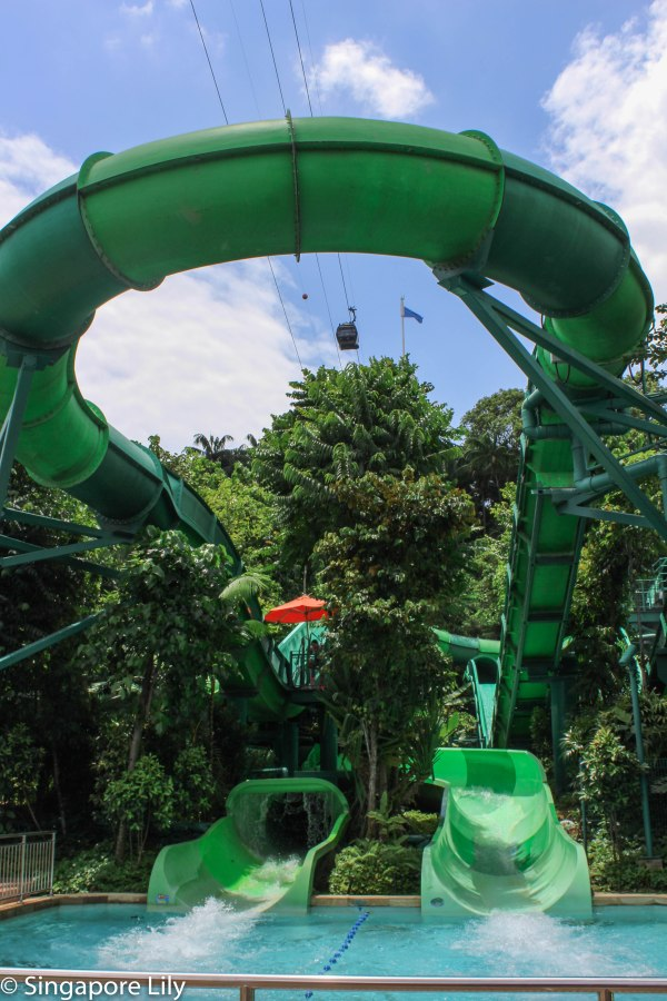 Adventure Cove Waterpark-1-25
