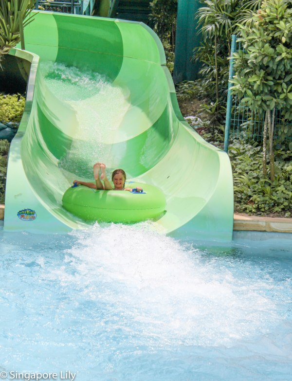 Adventure Cove Waterpark-1-38