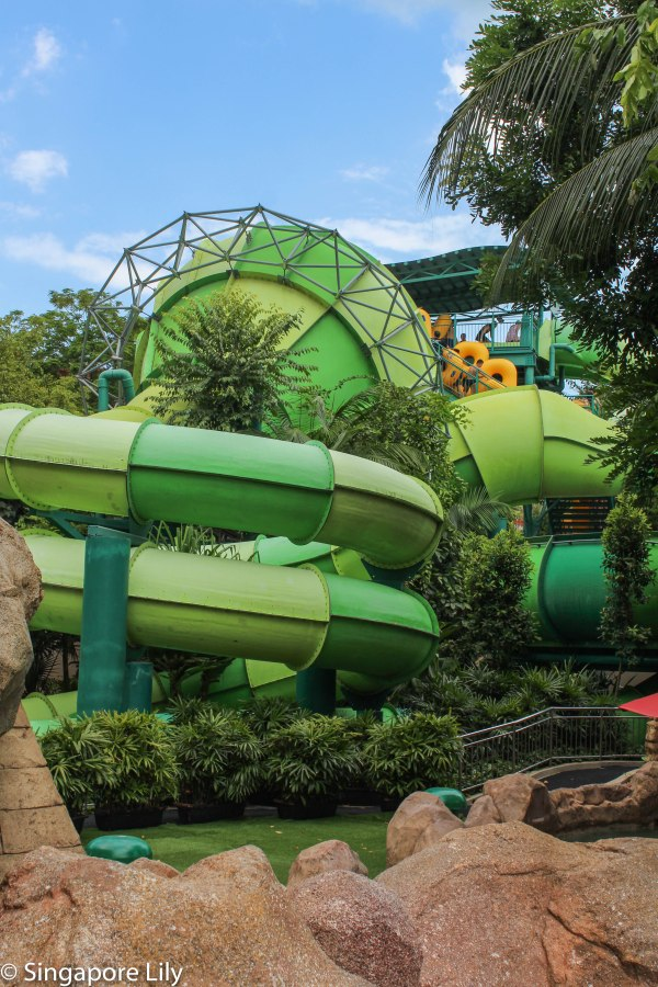 Adventure Cove Waterpark-1-47