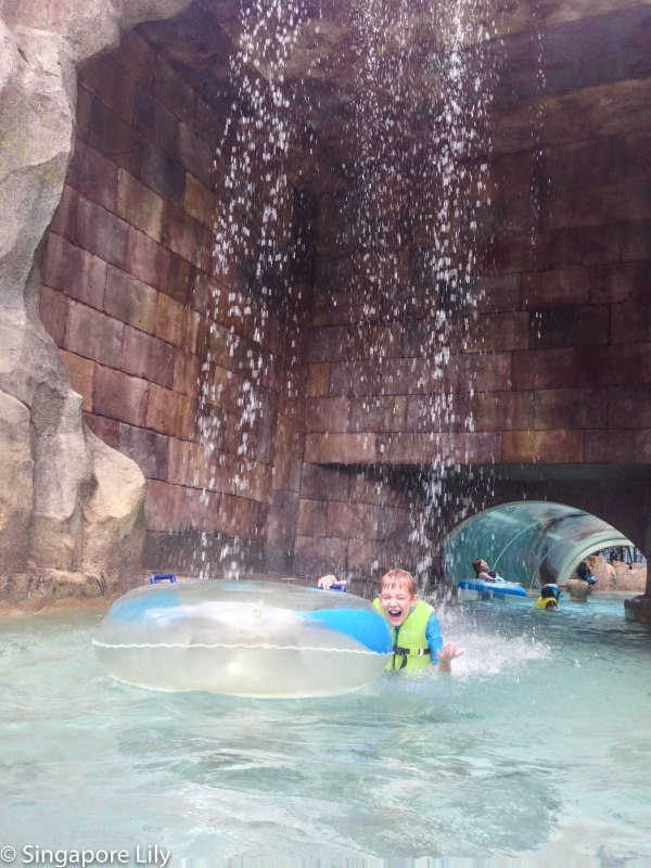 Adventure Cove Waterpark-1-56