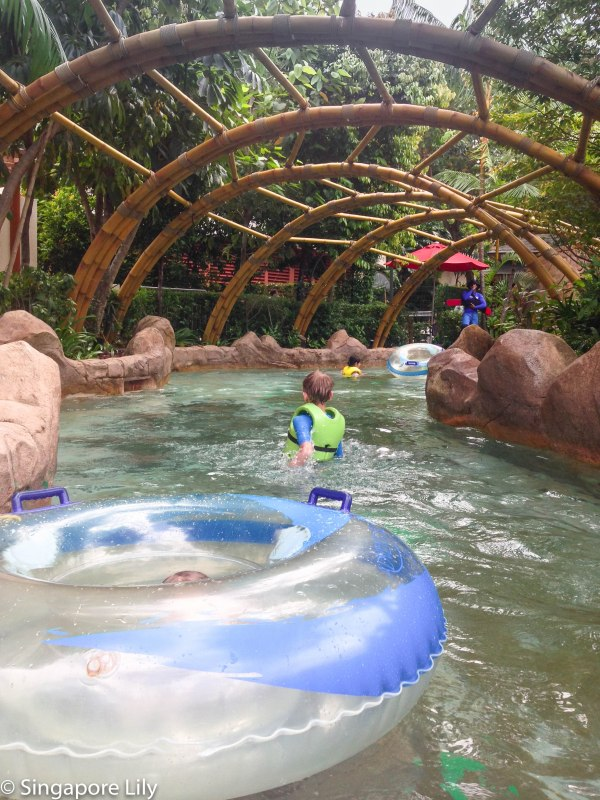 Adventure Cove Waterpark-1-63
