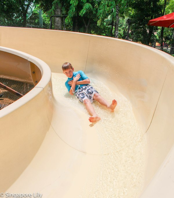 Adventure Cove Waterpark-1-9