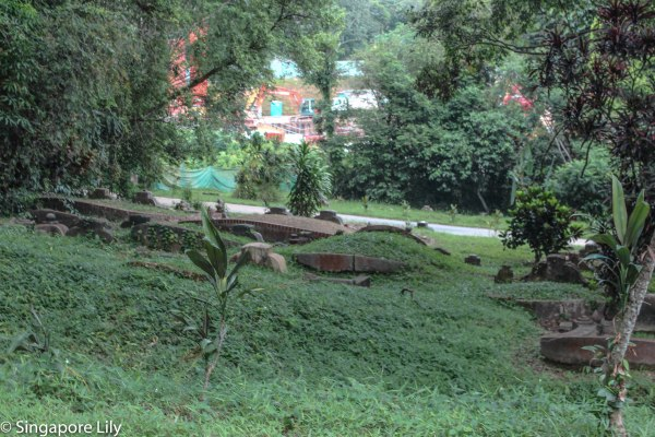 Bukit Brown Cemetary-1-106
