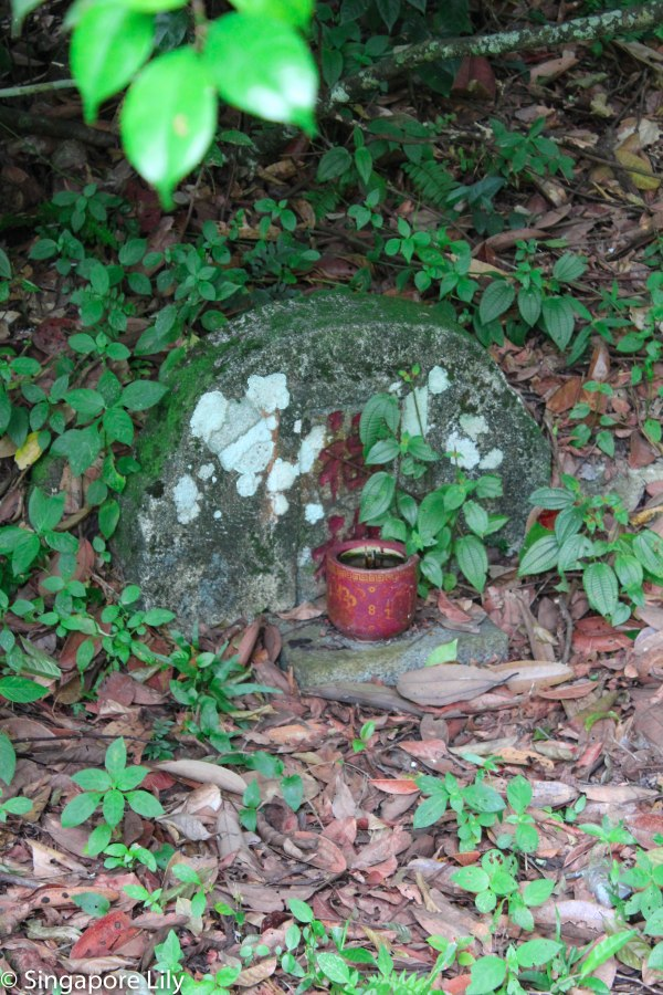 Bukit Brown Cemetary-1-18