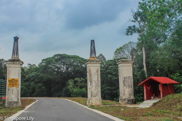 Bukit Brown Cemetary-1-2