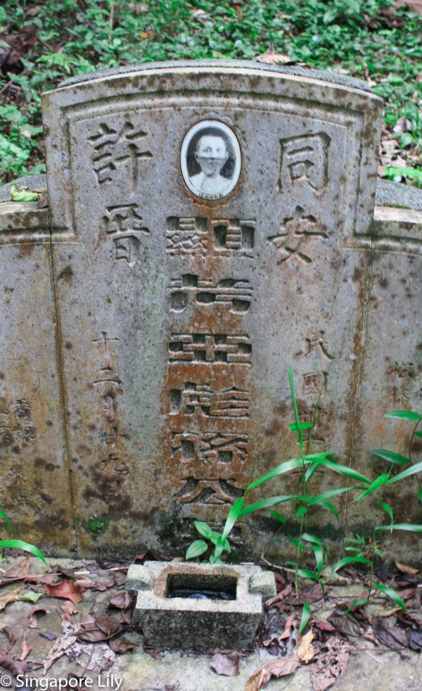 Bukit Brown Cemetary-1-24