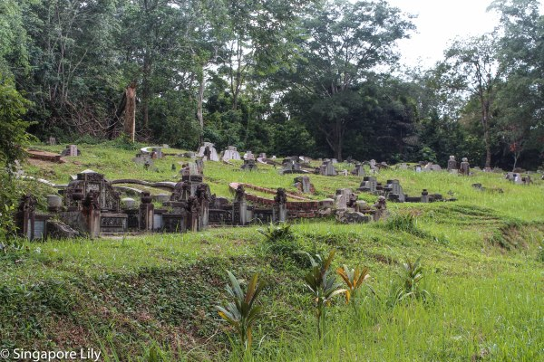 Bukit Brown Cemetary-1-75