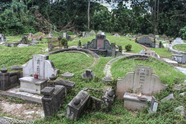 Bukit Brown Cemetary-1-94