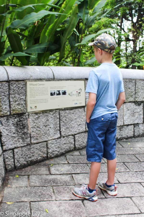 Fort Canning Park-1-18