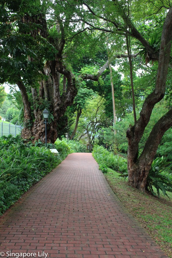 Fort Canning Park-1-42