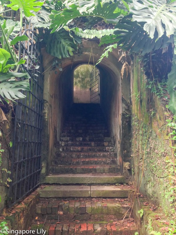 Fort Canning Park-1-76