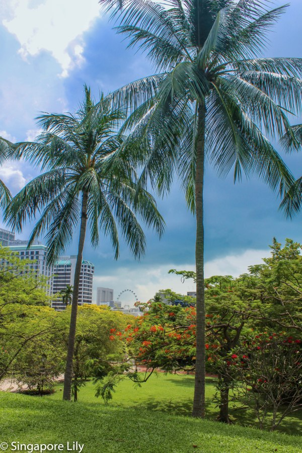 Fort Canning Park-6-3