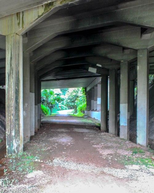 Green corridor-1-2