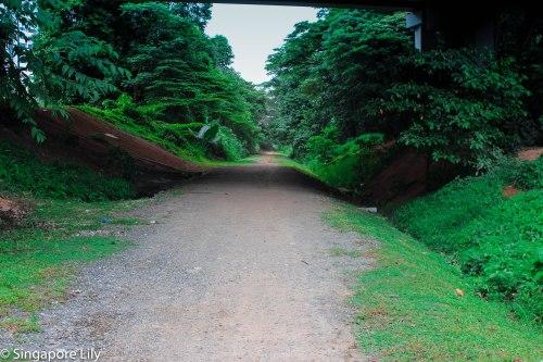 Green corridor-1-44