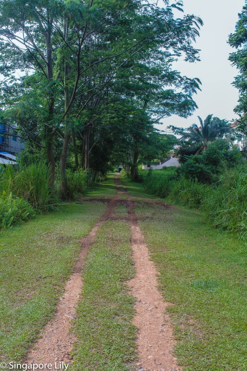 Green corridor-1