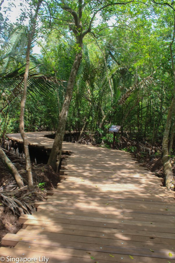 Pulau Ubin-1-36